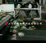 蔬菜除水沥水用什么设备,河南蔬菜翻转式风干机