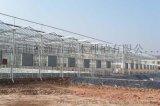 温室大棚-玻璃温室大棚专业厂家