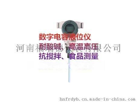 FRD802内插式高温高压液位仪