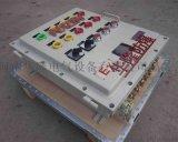 BXMD防爆配电箱/防爆照明配电箱