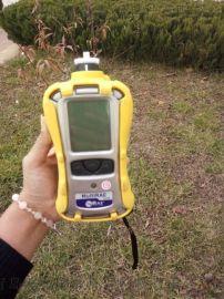 x、y射线检测仪,华瑞多气体检测仪