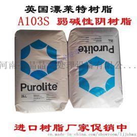 原装进口漂莱特树脂 漂莱特食品级树脂C100EFG