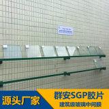 東莞羣安塑膠實業有限公司SGP膠片