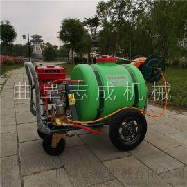 热 手推式喷雾器汽油除虫机水稻草坪杀虫机