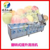 供应不锈钢连续式果蔬清洗机 水果清洗机 果脯生产线 可根据要求定做