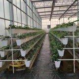 温室草莓立体种植槽 大棚蔬菜基质栽培槽