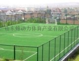 山東蜂動力體育器材廠家供應足球場地