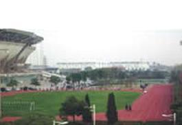 跑道、球场PU塑胶地坪(ZY-10)