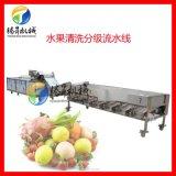 厂家定制水果清洗分级流水线 百香果选果机 脐橙选果机 选果机厂