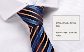 厂家批发 定制高端男士商务 领带 正装 韩版 外贸 纯色 制服礼品