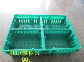 筐,小鸡运输筐厂家,小鸡塑料周转筐