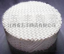 陶瓷波纹填料 陶瓷波纹规整填料也称陶瓷规整填料、陶瓷波纹填料