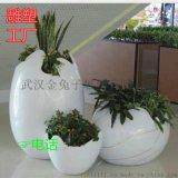 武汉玻璃钢花盆花箱雕塑厂家13437156698