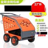 坦龙电动工业高压清洗机机械设备环卫小广告高压冲洗机