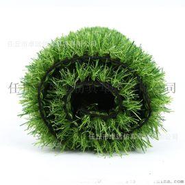 河北石家庄人造草坪厂家、足球场  草坪