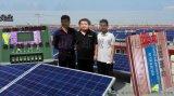 太陽控制器PWM 60A 12V 24V
