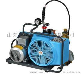 德国宝华BAUER100型呼吸器高压充气泵