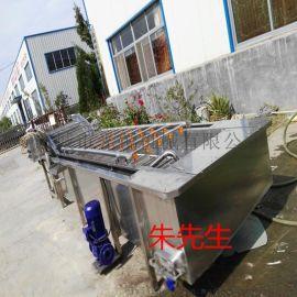 蘑菇菠菜清洗机 高压水流蔬菜清洗机