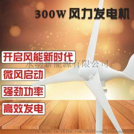 300W永磁风能发电风力发电机 长沙永动小型风力发电机