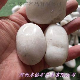 公园铺路用纯白色鹅卵石价格 河北沧州本格3-5公分纯白色鹅卵石批发