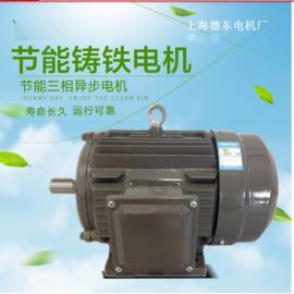上海德东YE2高效节能三相异步電機