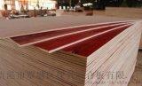 广西建筑模板厂 酚醛面建筑木模板