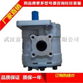 CBQ-F540-AFPL 齿轮油泵合肥信仁液压机械 叉车配件齿轮泵