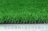 人造草坪已经占领足球场半壁江山