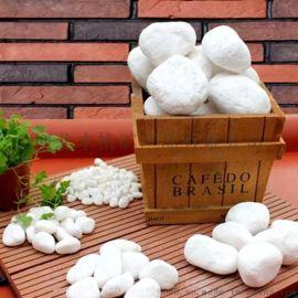 本格供应园艺白石子 白石头 景观白色鹅卵石