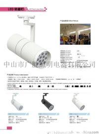 广万达牌LED轨道灯GWD--GDD012W