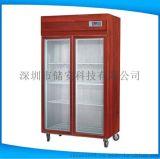 紅木恆溫恆溼櫃高端私人定製恆溫恆溼櫃