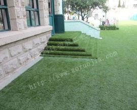 青岛花园草坪-别墅草坪-无土草坪