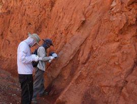 手持式礦石分析儀主要特性