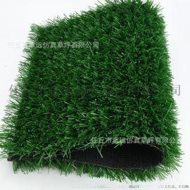 山西太原人造草坪厂家、塑胶跑道、足球场草坪