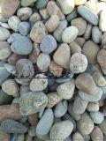 邢臺鋪路鵝卵石,變壓器鵝卵石生產廠家
