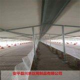 台州塑料網 塑料網表 小雞育雛網