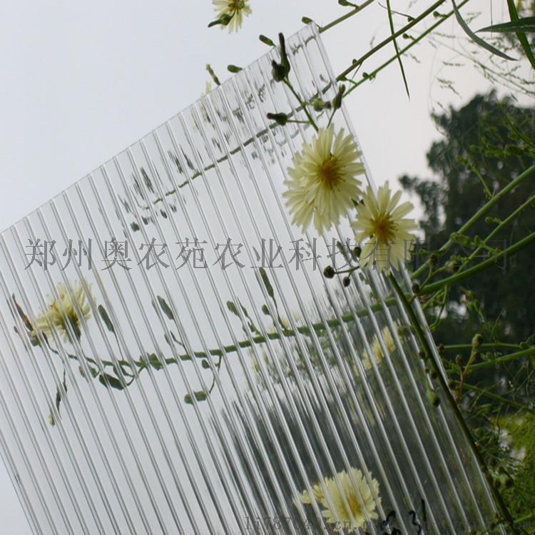 8mm双层中空透明阳光板 农业温室大棚 8mm透明蜂窝阳光板