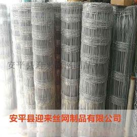 草原网牛栏网,养殖铁丝网,养殖围栏网