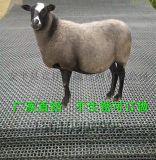 广西不锈钢丝羊床网@不锈钢丝羊床网厂@不锈钢丝羊床网厂家