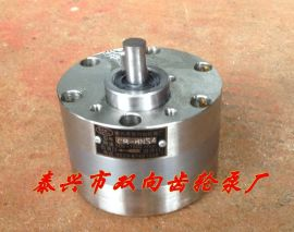 不锈钢齿轮泵 化工 食品齿轮泵 CB-BNS不锈钢泵