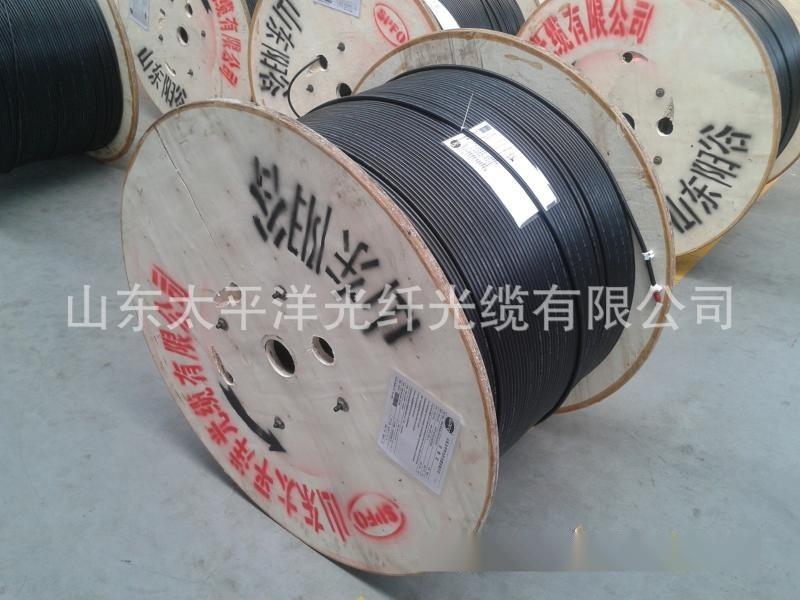 太平洋GYTS架空光缆 厂家直销 单模24芯钢带铠装 管道GYTA