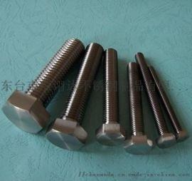 钛钢外六角螺丝M6M8M10M12M14M16