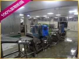 直销诸城hp-400型鱼味肉排全自动上浆机裹粉机