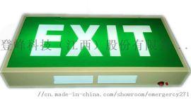 欧标消防诱导应急灯嵌入式安全出口疏散标志带CE