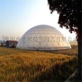 球形溫室廠家 鳥巢溫室造價 溫室大棚工程