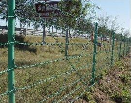 道路防护网|道路防护隔离栅|森林防护网