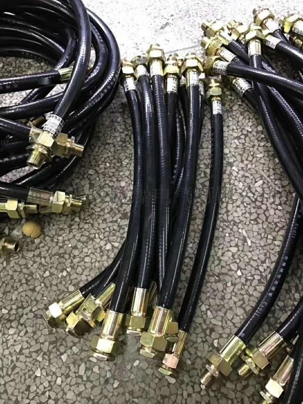 管螺纹3/4防爆挠性连接管