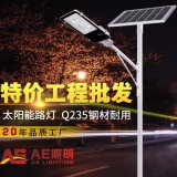 AE照明AE-TYN-01 新農村改造太陽能路燈