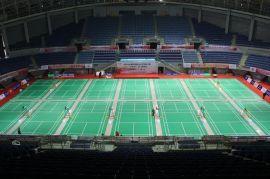 英利奥Y-20152小石纹羽毛球运动地板