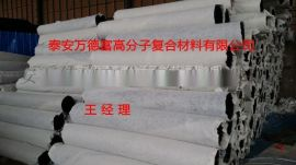 十年质量品质 塑料盲沟|渗水片材|网垫 山东万德富